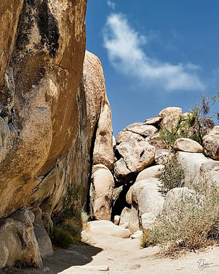 Photograph - Joshua Tree Rocks by Endre Balogh