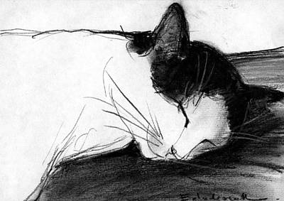 Sleeping Drawing - Joujou 1 by Mona Edulesco