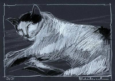 Drawing - Joujou 3 by Mona Edulesco