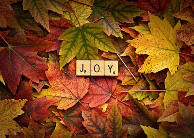 Photograph - Joy-autumn by  Onyonet  Photo Studios