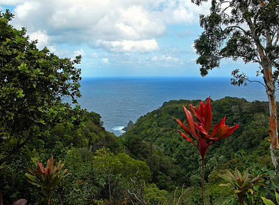 Photograph - Jurassic Park Overlook by Lynn Bauer