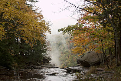 Photograph - Kaaterskill Falls In The Fog by Gregory Scott