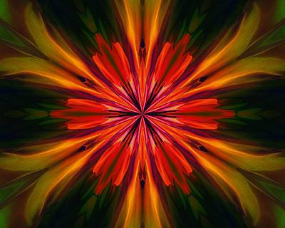 Digital Art - Kaleidoscope Floral 121011 by David Lane