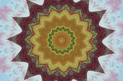 Photograph - Kaleidoscope Flower by Donna Greene