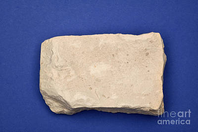 White Clay Photograph - Kaolinite by Ted Kinsman