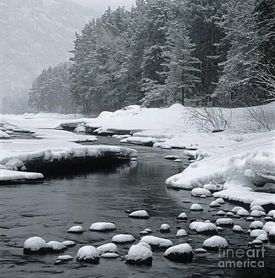 Katun River Print by Elena Filatova