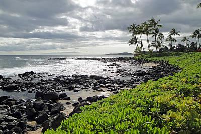 Kauai Afternoon Art Print by Robert Meyers-Lussier