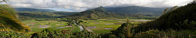 Photograph - Kauai Taro Fields by Roger Mullenhour