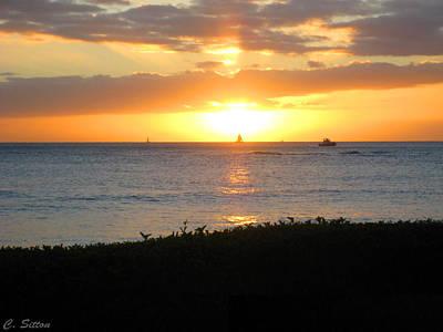 Photograph - Kawaii Paradise by C Sitton