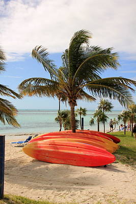 Photograph - Kayaks And Palm Trees by RobLew Photography
