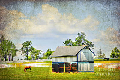 Kentucky Pastures Art Print by Darren Fisher