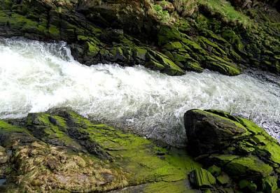 Creekbed Photograph - Ketchikan Creek 2 by Randall Weidner