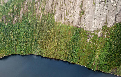 Arial Photograph - Ketchikan Misty Fjord 8857 by Michael Peychich