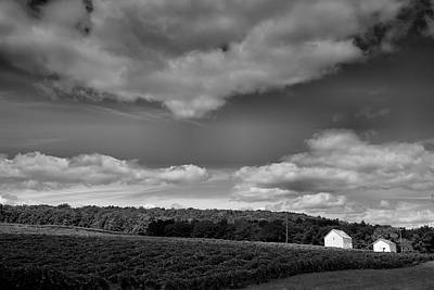 Pastoral Vineyard Photograph - Keuka Landscape Vi by Steven Ainsworth