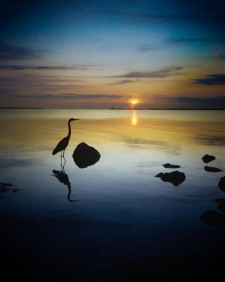 Photograph - Key Largo Solitary Fisher by Elaine Snyder