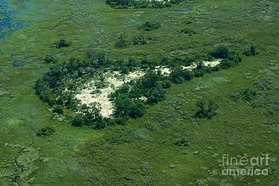 Photograph - Key To The Okavango Delta by Mareko Marciniak