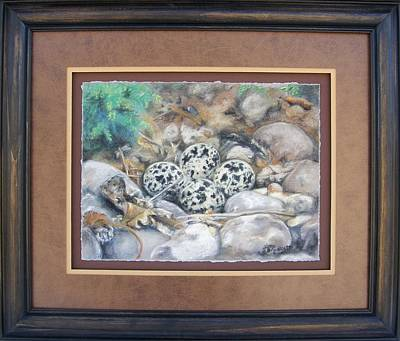 Killdeer Nest Framed Original by Lori Brackett