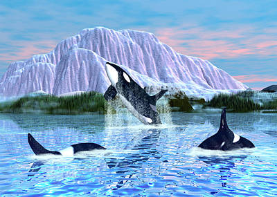 Digital Art - Killer Whales by Walter Colvin