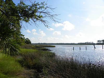Photograph - Kimbers Fishing Spot Sssh by Sheri McLeroy