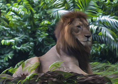 Photograph - King Of The Jungle by Zoe Ferrie