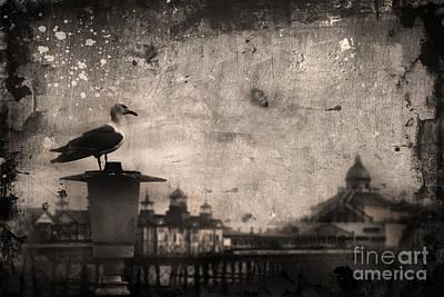 Photograph - King Of The Pier by Yhun Suarez