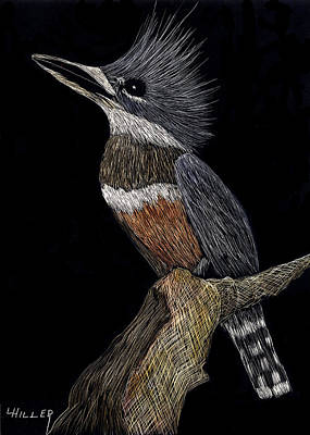Kingfisher Original by Linda Hiller
