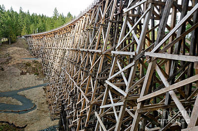 Wooden Photograph - Kinsol Trestle L Railroad Bridge Framework Spanning Valley by Andy Smy