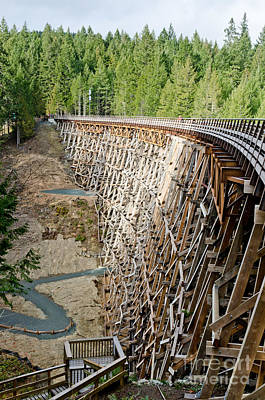 Wooden Photograph - Kinsol Trestle Trans Canada Trail Vancouver Island by Andy Smy