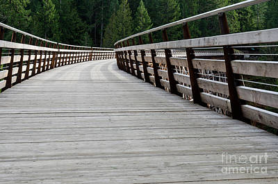 Wooden Photograph - Kinsol Walkway Kinsol Trestle Pathway Across The Railroad Bridge Restored by Andy Smy