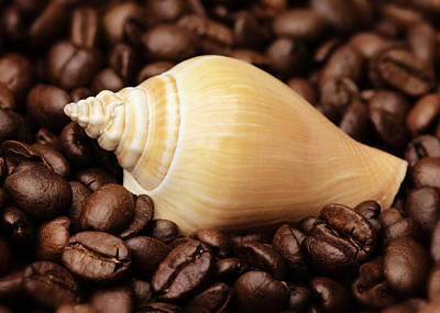 Kaffee Photograph - Kitchen Pictures Coffee Beans Snail by Falko Follert