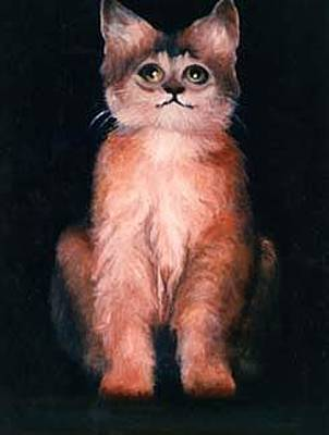 Painting - Kitty Kat by Jordana Sands