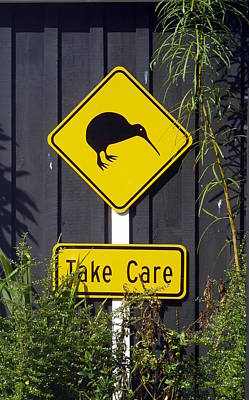Photograph - Kiwi Crossing by Carla Parris