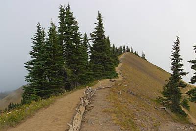 Photograph - Klahane Ridge Switchback Trail by Heidi Smith