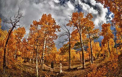 Photograph - Knights Of Pythias Autumn by Kevin Munro