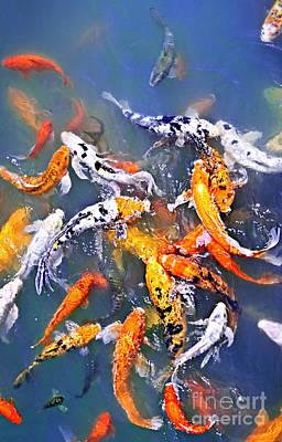 Animals Photos - Koi fish in pond by Elena Elisseeva