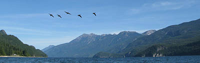 Photograph - Kootenay Lake by Cathie Douglas