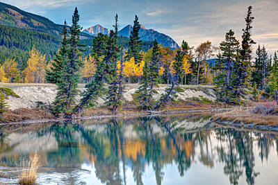 Craig Brown Photograph - Kootenay Plains by Craig Brown