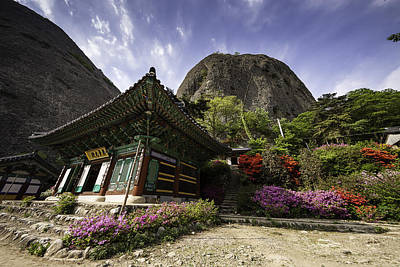 Y120817 Photograph - Korean Buddhist Temple With Flowers And Mountains by Thomas Arthur