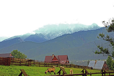 Photograph - Koscielisko Mountain Scene by Tony Brown