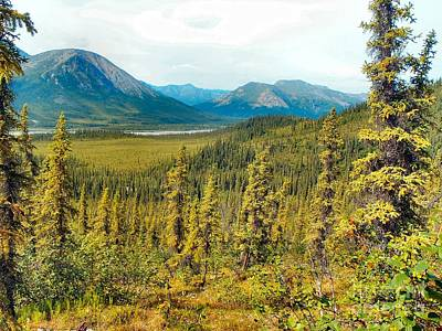 Photograph - Koyukuk Valley Hike by Adam Owen