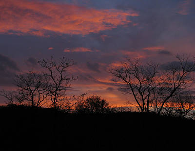 Photograph - Kruger At Sunset by Joseph G Holland