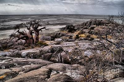 Photograph - Kubu Island View by Mareko Marciniak