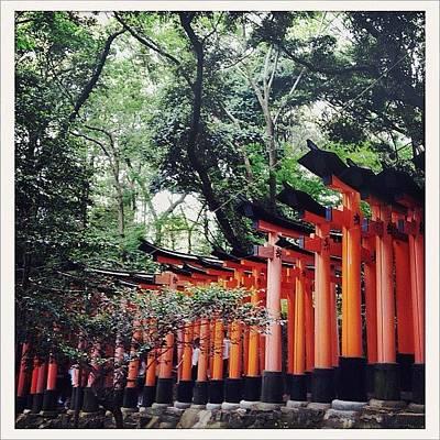 Trail Wall Art - Photograph - Kyoto Torii by Marc Gascoigne