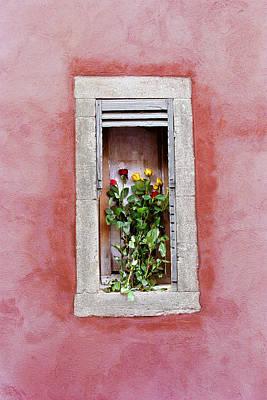 Photograph - La Jardiniere by John Galbo