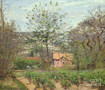 Vines Painting - La Maison Rose by Camille Pissarro