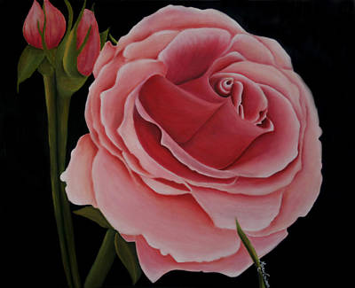 Painting - La Rosa  by Mary Gaines