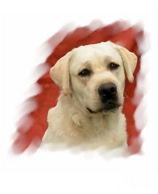 Retriever Digital Art - Labrador Retriever 798 by Larry Matthews
