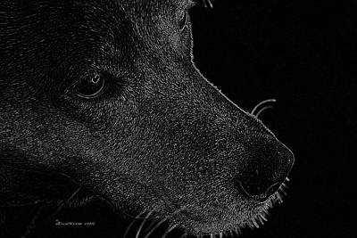 Retrievers Digital Art - Labrador Retriever by EricaMaxine  Price