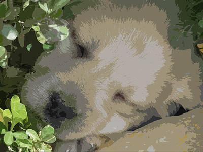 Pet Care Mixed Media - Labrador Retriever Puppy by Jesus Nicolas Castanon