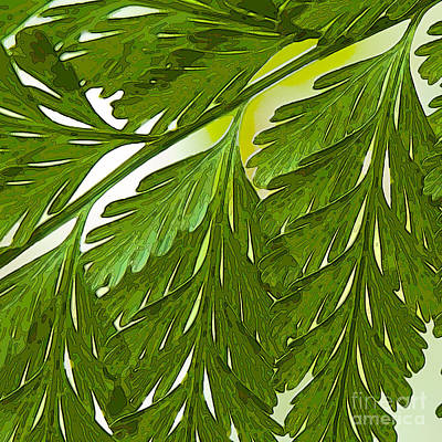 Digital Art - Lacy Fern Cameo One by Herb Paynter